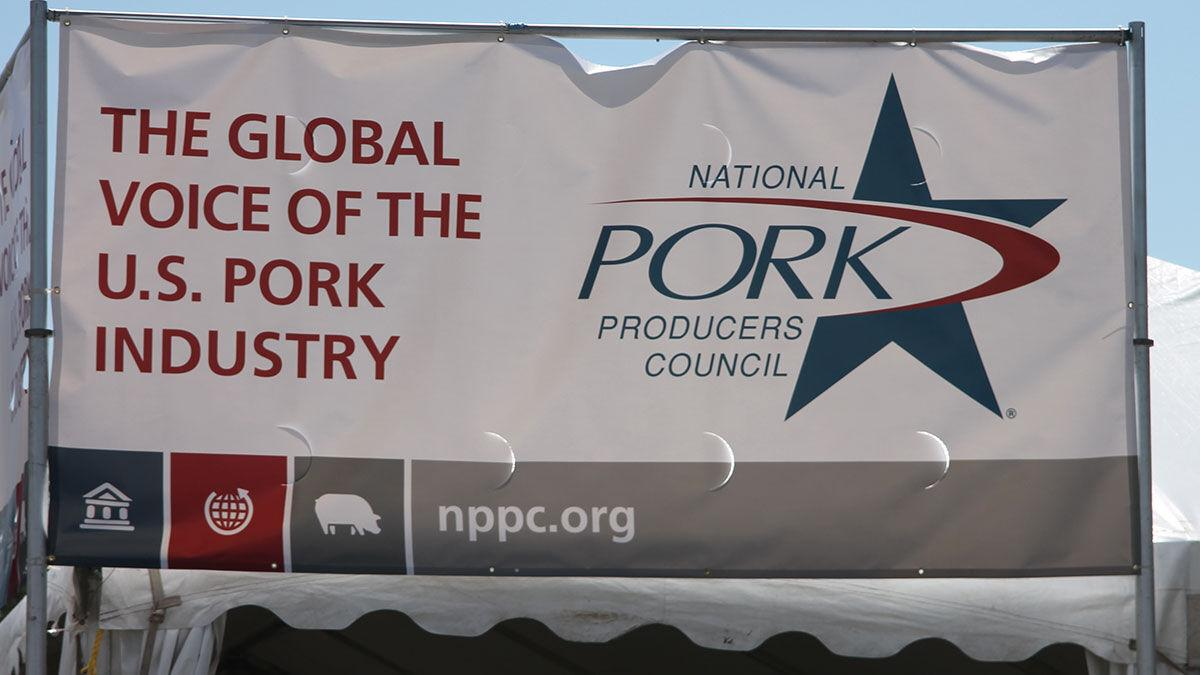 WPX Banner