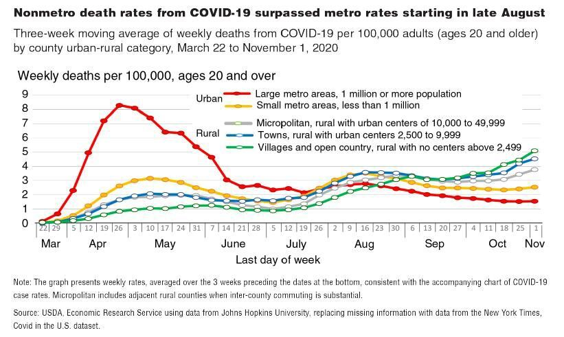 COVID death rates