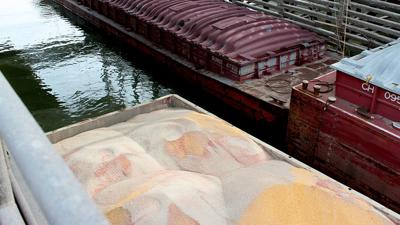 Soybean export barge photo