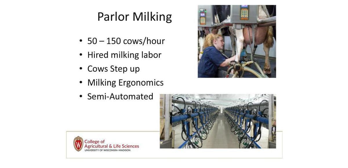 Parlor-milking stats