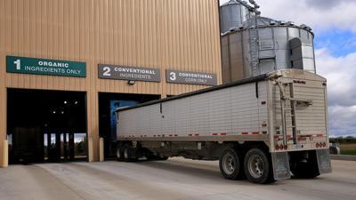 Grain truck at elevator