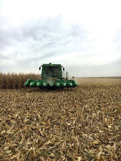 Nebraska Corn encourages safety this harvest season