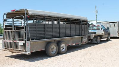 Keeping cattle trailers clean