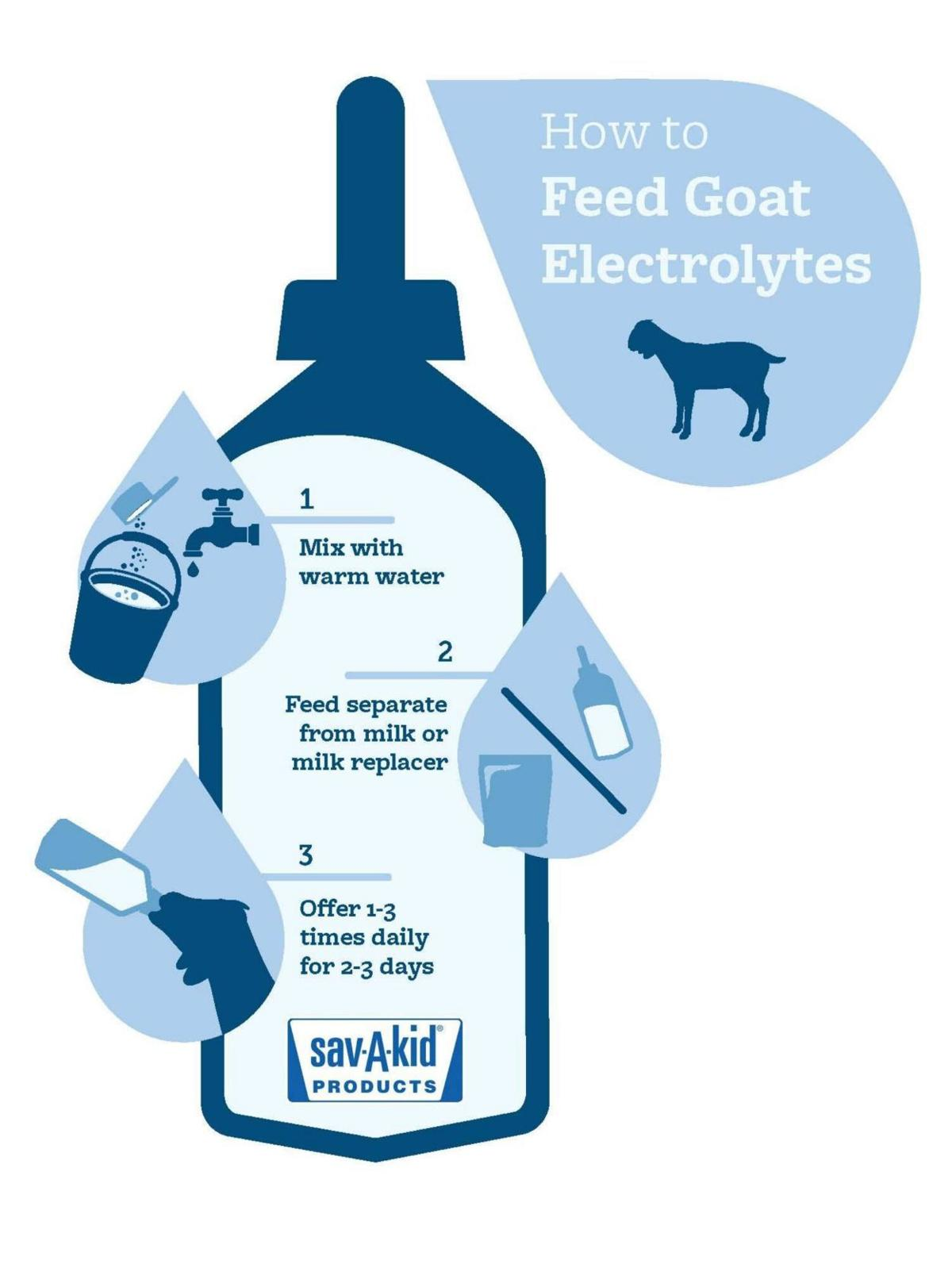 How to Feed Goats Electrolytes