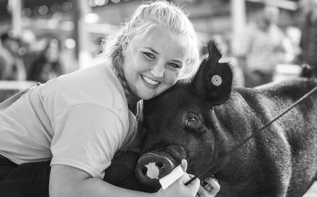 Minnesota Youth Livestock Expo photo