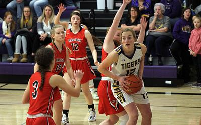 Tigers beat the snow, bury Madison at home