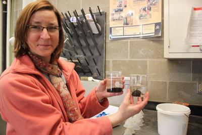 Sharon Weyers, USDA Soil Scientist, Morris, Minn.