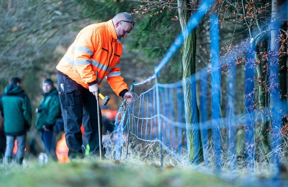 An electrified fence to deter wild boars