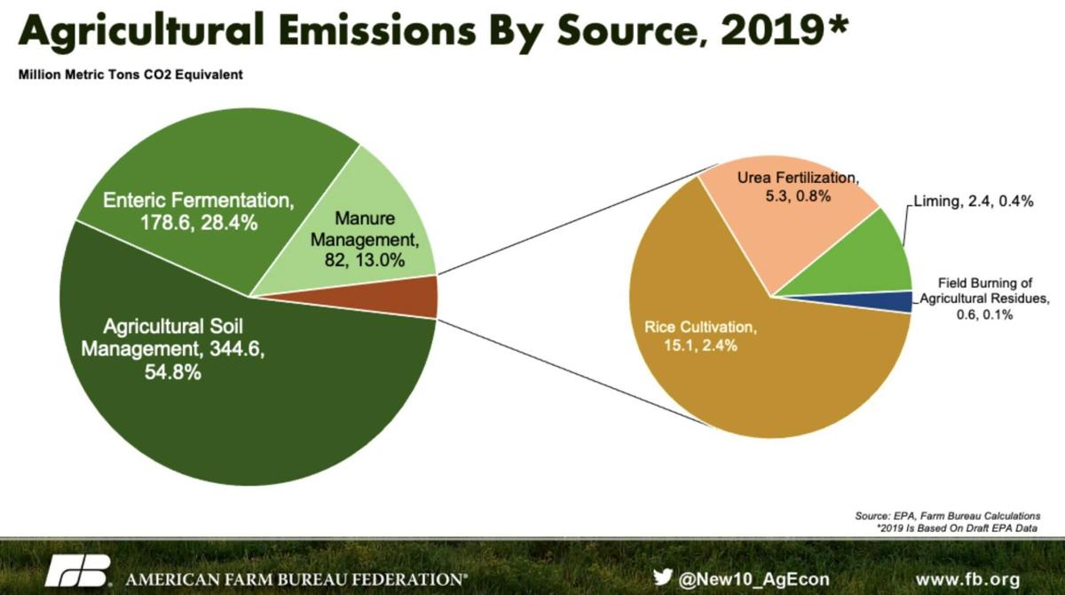 Agricultural Emissions by Source 2019