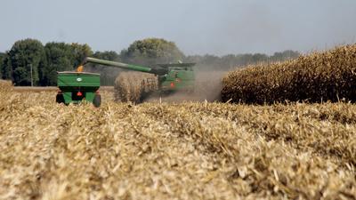 Illinois corn yields
