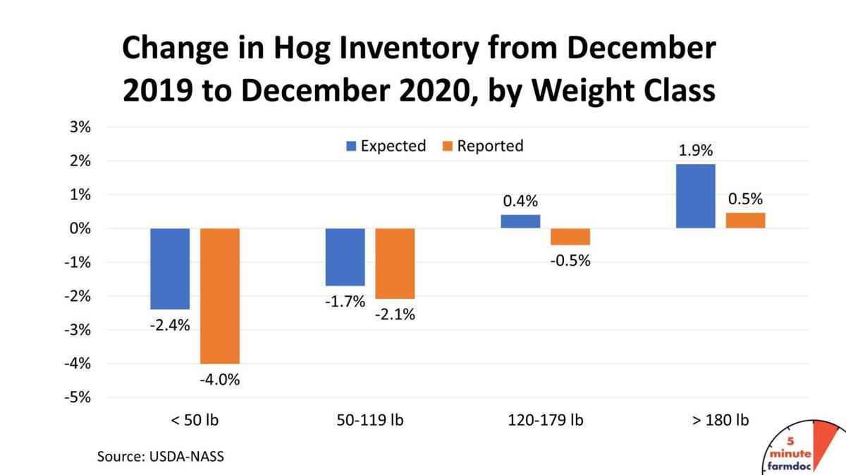 Change in Hog Inventory
