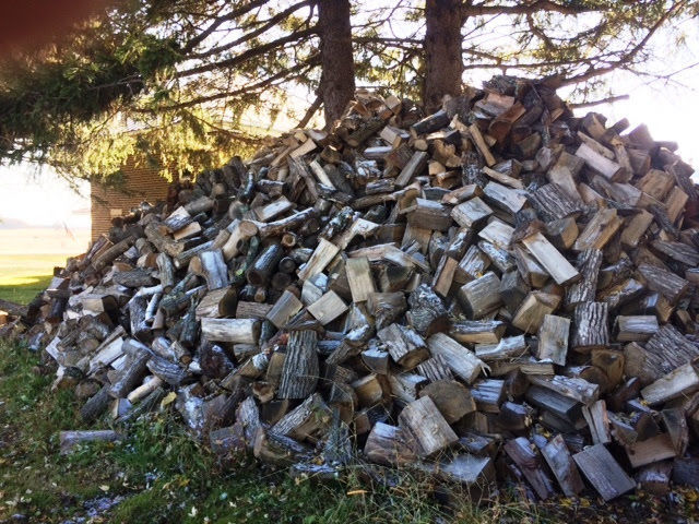 Clements woodpile