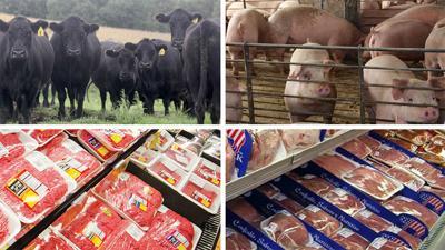 Cattle hog meat in store split screen