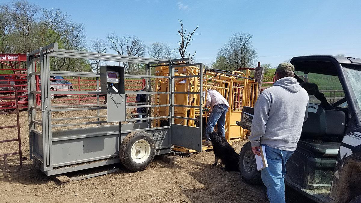 MU Extension livestock specialist Jim Humphrey