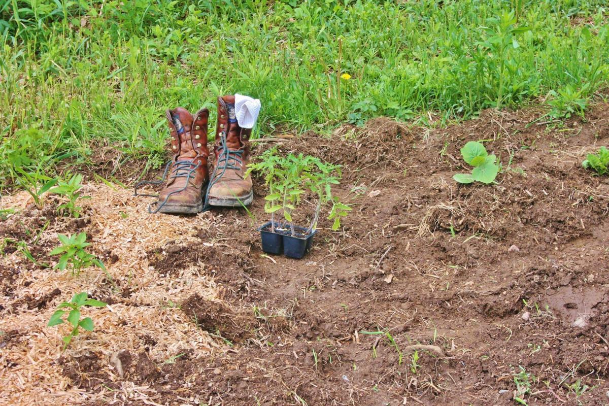 Boots in garden