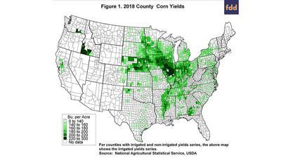 Corn Yield map