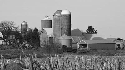 Black and white farm scene