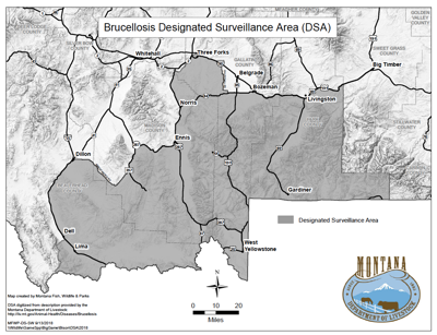 Brucellosis Boundary in Montana