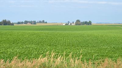 Generic farmland filephoto
