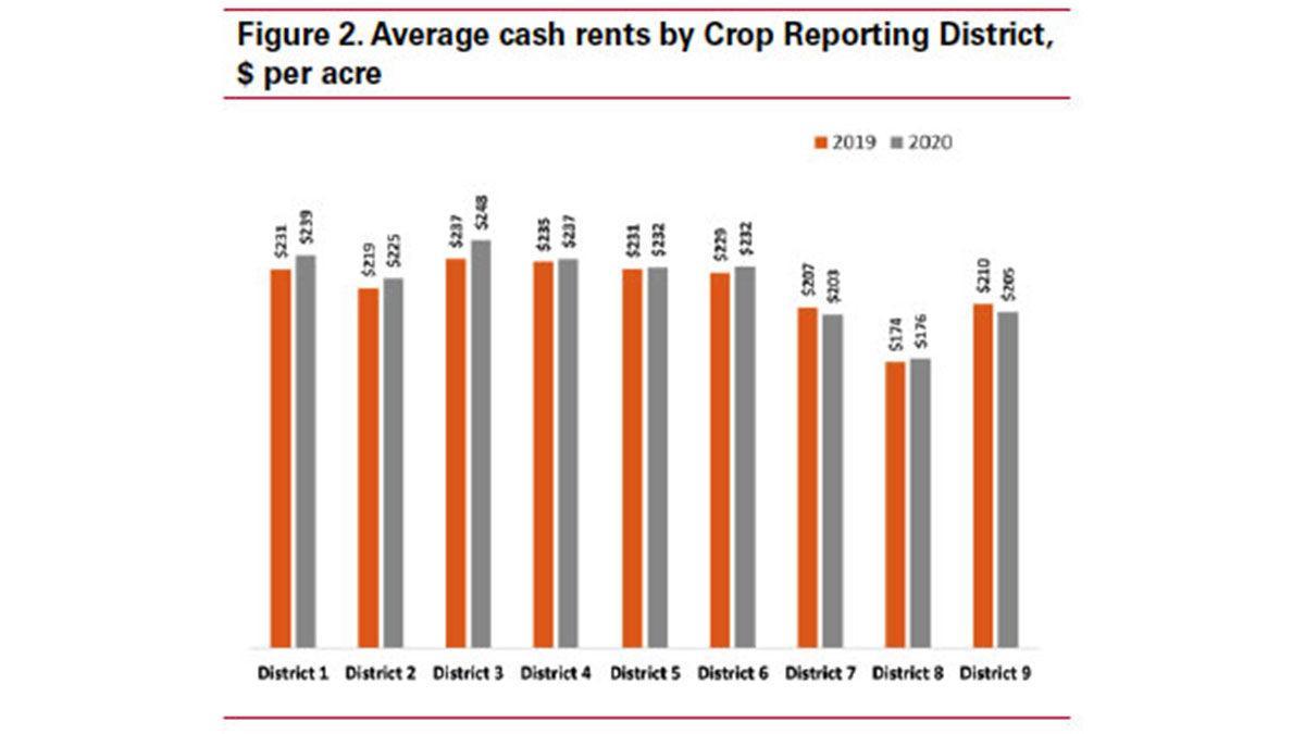 Cash rent figure 2