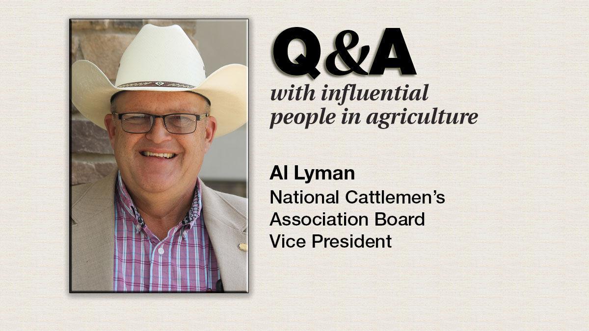 Q & A Al Lyman