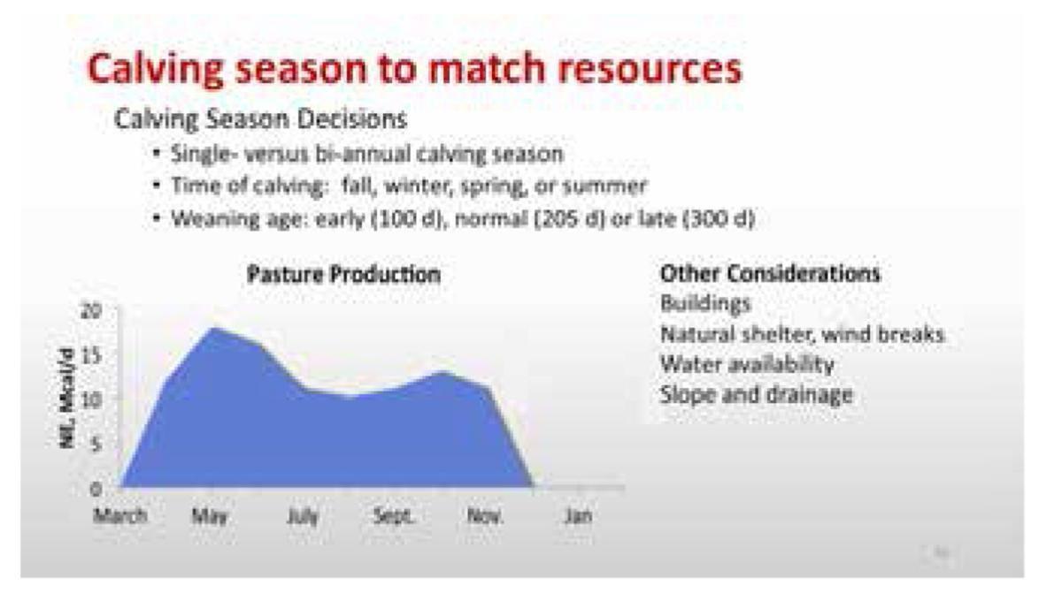Calving season to match resources