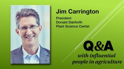 Q & A Jim Carrington