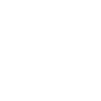 Nebraska Ag Youth Institute logo