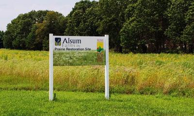 Pollinator habit at Alsum Farms of Spring Green, Wisconsin