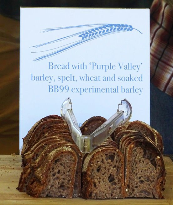 Bread made from experimental barley variety