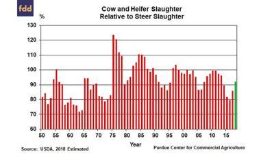 FarmDoc cattle herd expansion