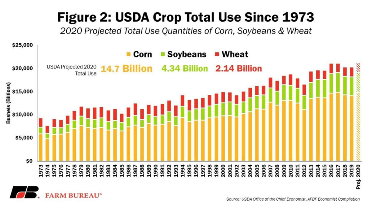 USDA Crop Total Use Since 1973