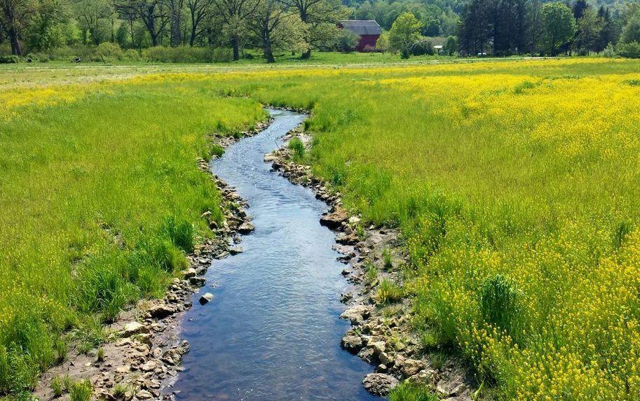 Clear stream in Wisconsin