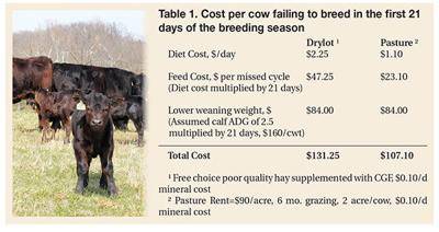 Calf table
