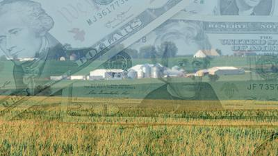 Corn and soybean field with ghosted money