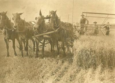 Keller's threshing machine