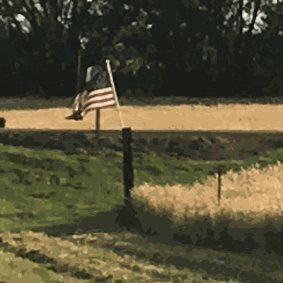 American flag and wheat