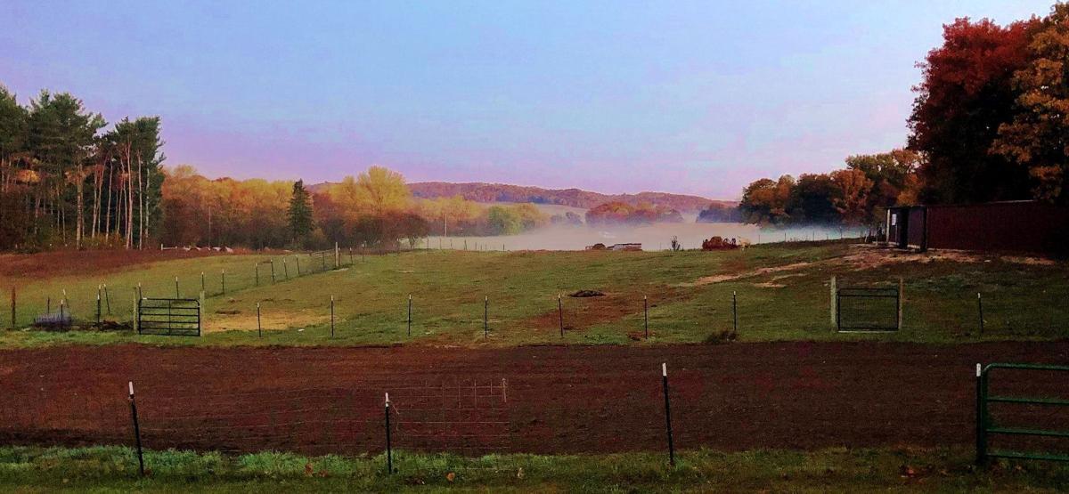 Hardie garden farm hills view