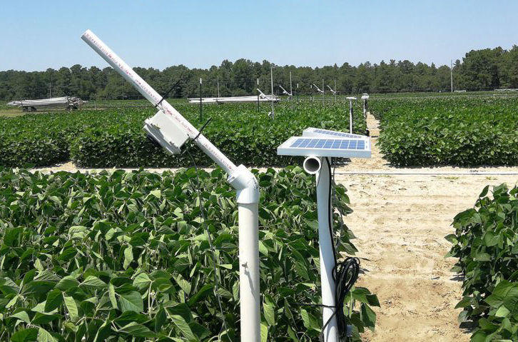 """""""StressCam"""" system monitors soybeans for stress"""