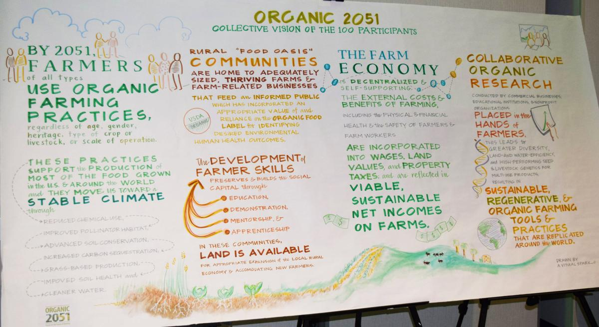 Organic 2051 collective vision