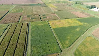 drone image of part of the Southeast Research Farm in Crawfordsville