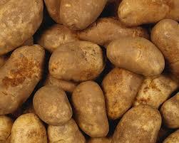 potato pic