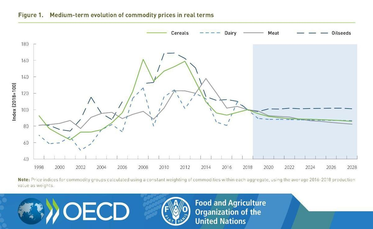 Medium-term evolution of commodity prices in real terms