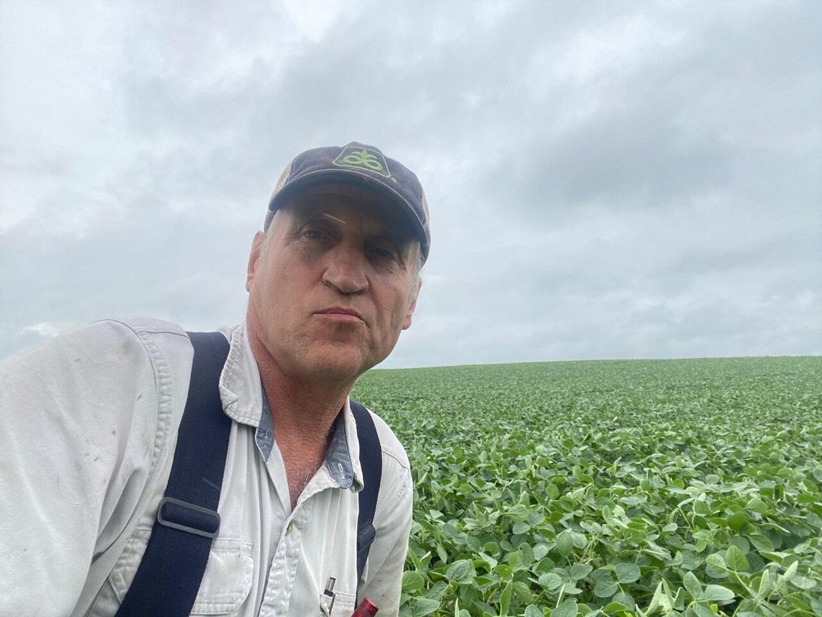 Paul Freeman, soybeans