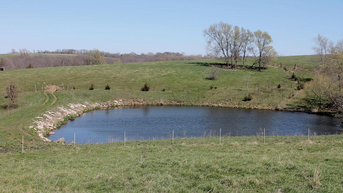 Farm pond