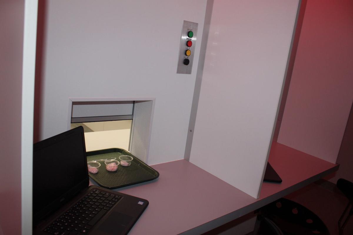 AURI/SMSU sensory lab.