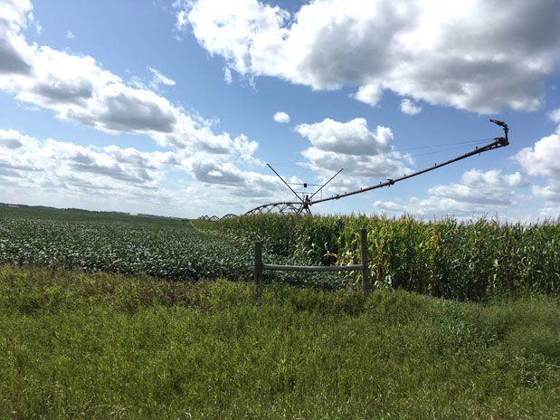 Irrigation September