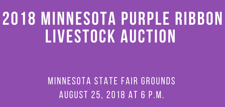 2018 annual 4 h purple ribbon auction draws crowd of supportive purple ribbon auction thecheapjerseys Choice Image