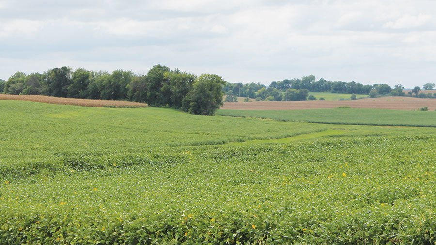 cropland acreages