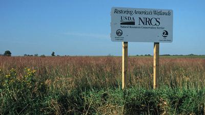 NRCS wetlands sign